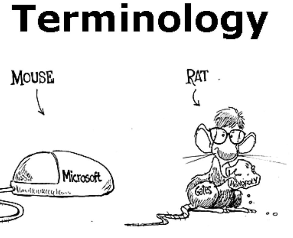 The importance of terminology