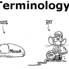 Terminology 101: Getting Started